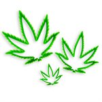 Marijuana Cannabis Leaf Cutter