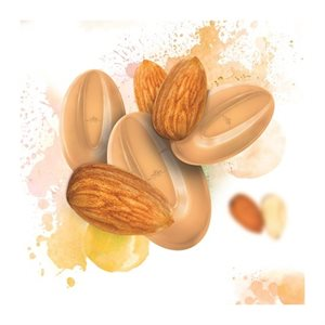 Almond Inspiration 30.5% Cocoa Feves By Valrhona 1 lb